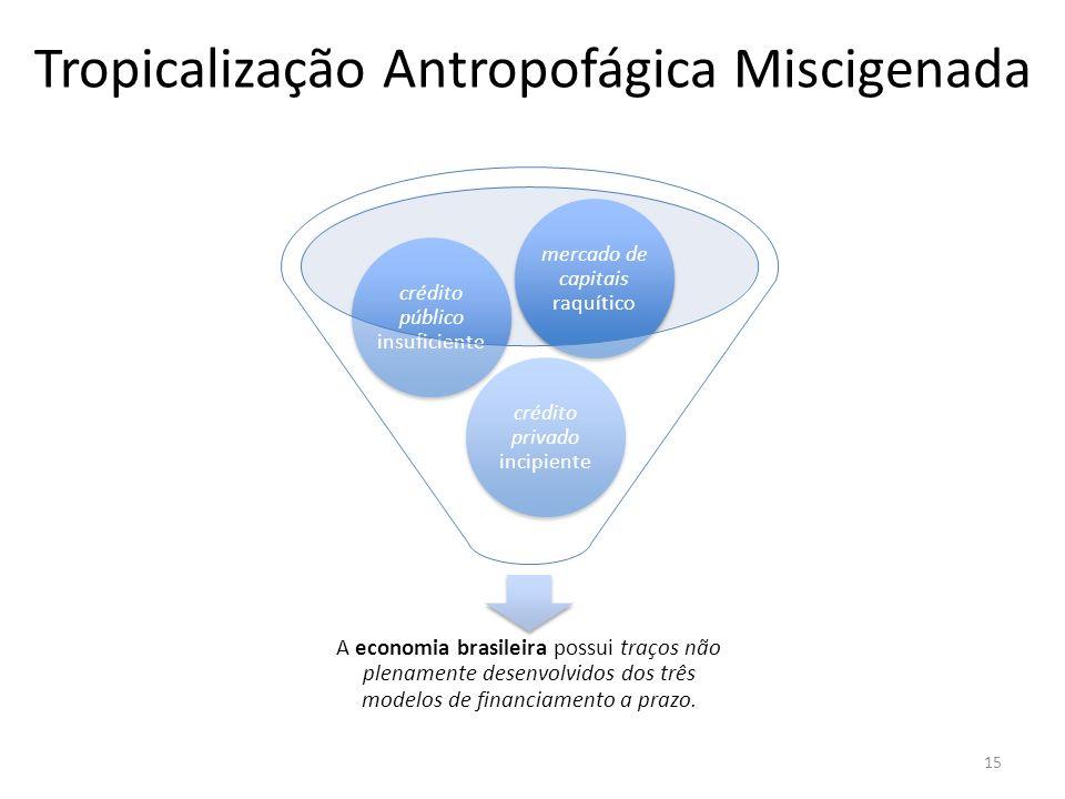 Tropicalização Antropofágica Miscigenada 15 A economia brasileira possui traços não plenamente desenvolvidos dos três modelos de financiamento a prazo
