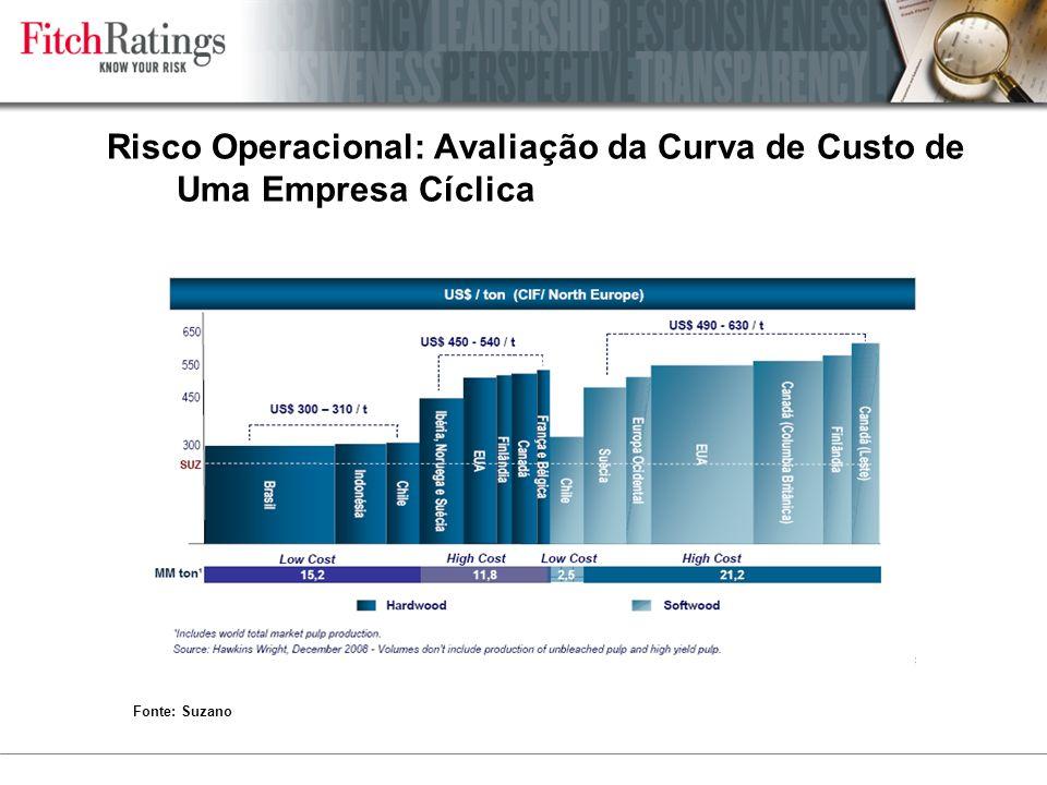 Risco Operacional: Avaliação da Curva de Custo de Uma Empresa Cíclica Fonte: Suzano