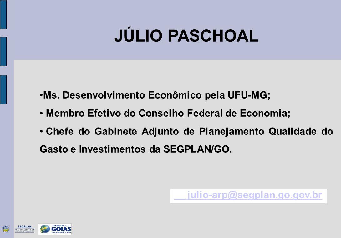 JÚLIO PASCHOAL Ms. Desenvolvimento Econômico pela UFU-MG; Membro Efetivo do Conselho Federal de Economia; Chefe do Gabinete Adjunto de Planejamento Qu