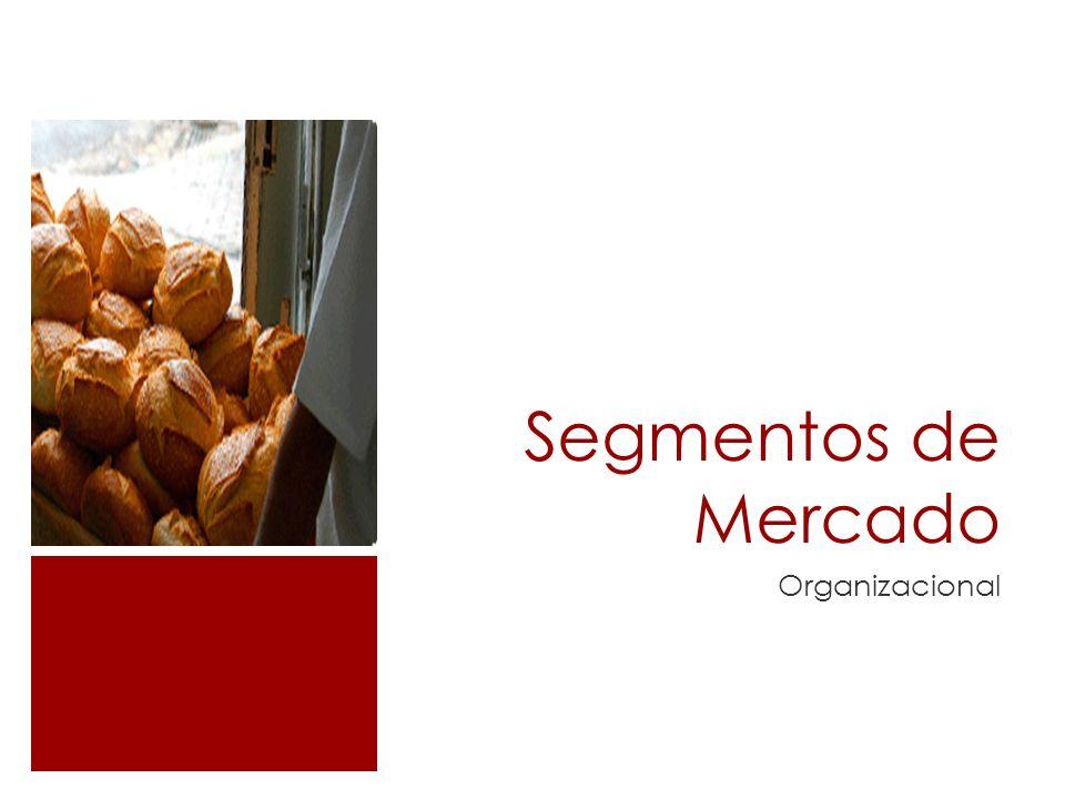 Segmentos de Mercado Organizacional