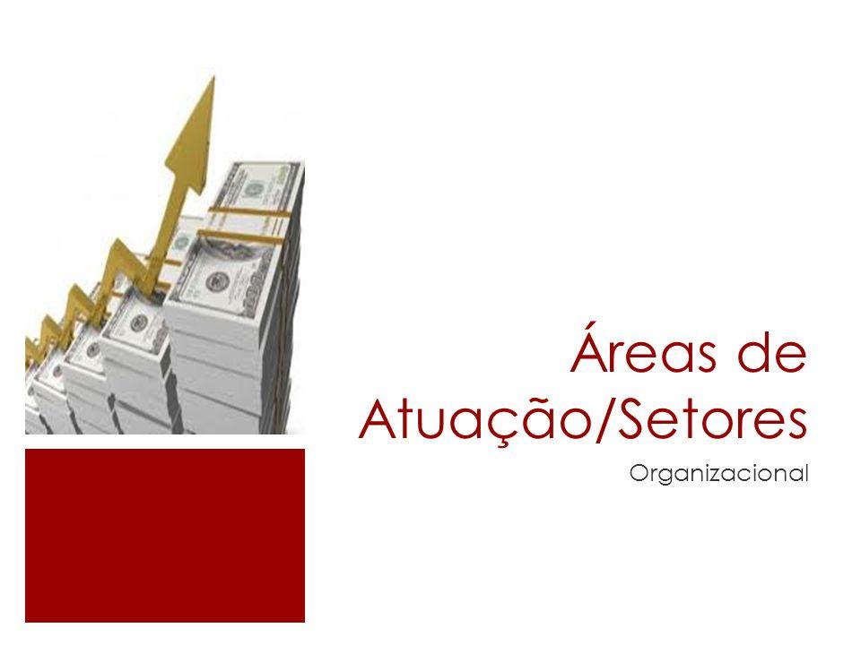 Áreas de Atuação/Setores Organizacional