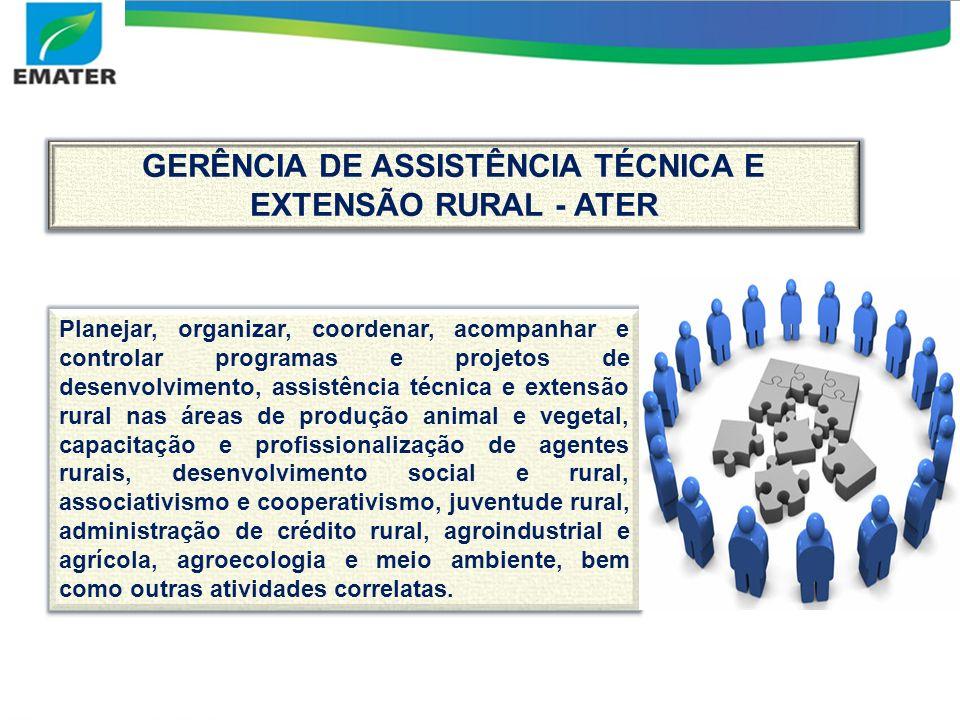 GERÊNCIA DE ASSISTÊNCIA TÉCNICA E EXTENSÃO RURAL - ATER Planejar, organizar, coordenar, acompanhar e controlar programas e projetos de desenvolvimento