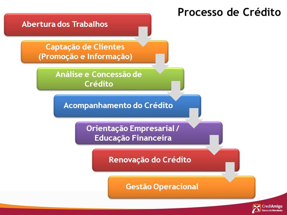 Processo de Crédito Acompanhamento do Crédito Orientação Empresarial / Educação Financeira Renovação do Crédito Gestão Operacional Abertura dos Trabal