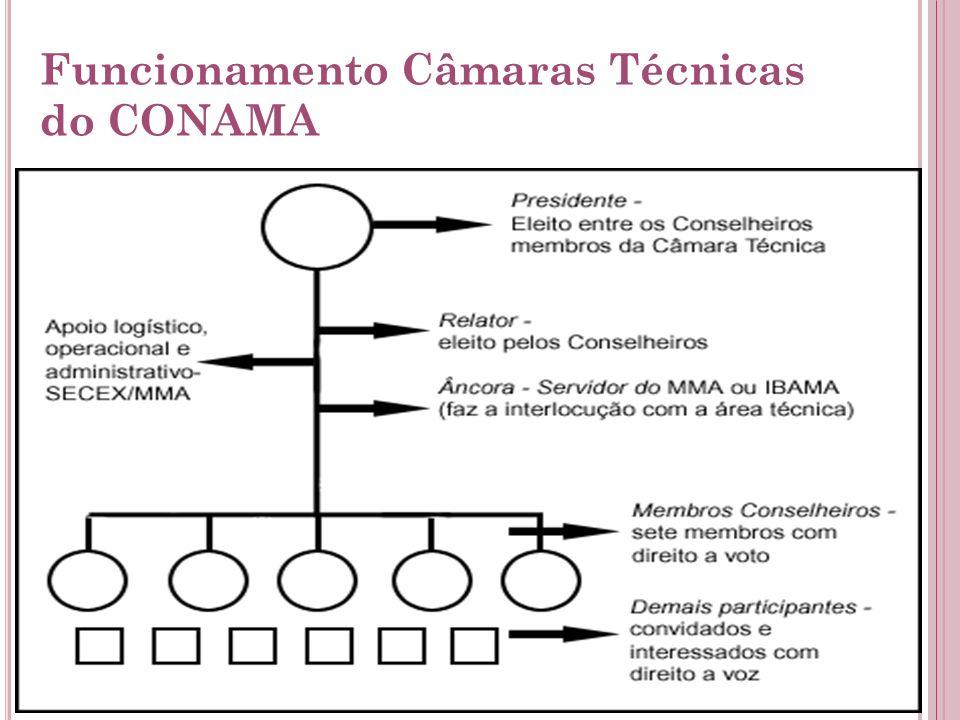 Funcionamento Câmaras Técnicas do CONAMA