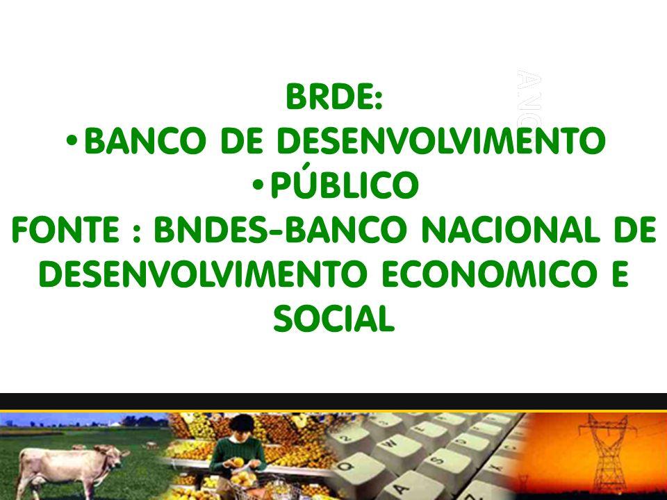 BRDE: BANCO DE DESENVOLVIMENTO PÚBLICO FONTE : BNDES-BANCO NACIONAL DE DESENVOLVIMENTO ECONOMICO E SOCIAL