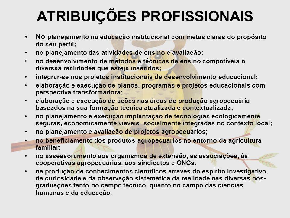 ATRIBUIÇÕES PROFISSIONAIS No planejamento na educação institucional com metas claras do propósito do seu perfil; no planejamento das atividades de ens