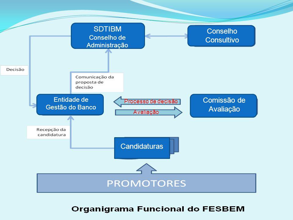 QUADRO INSTITUCIONAL DO FESBEM O quadro institucional do FESBEM abrange as seguintes entidades: A instituição bancária, a quem compete receber, analis