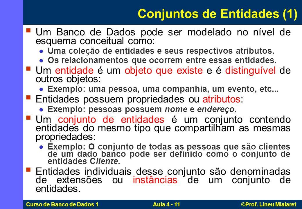 Curso de Banco de Dados 1 Aula 4 - 11 ©Prof. Lineu Mialaret Conjuntos de Entidades (1) Um Banco de Dados pode ser modelado no nível de esquema conceit