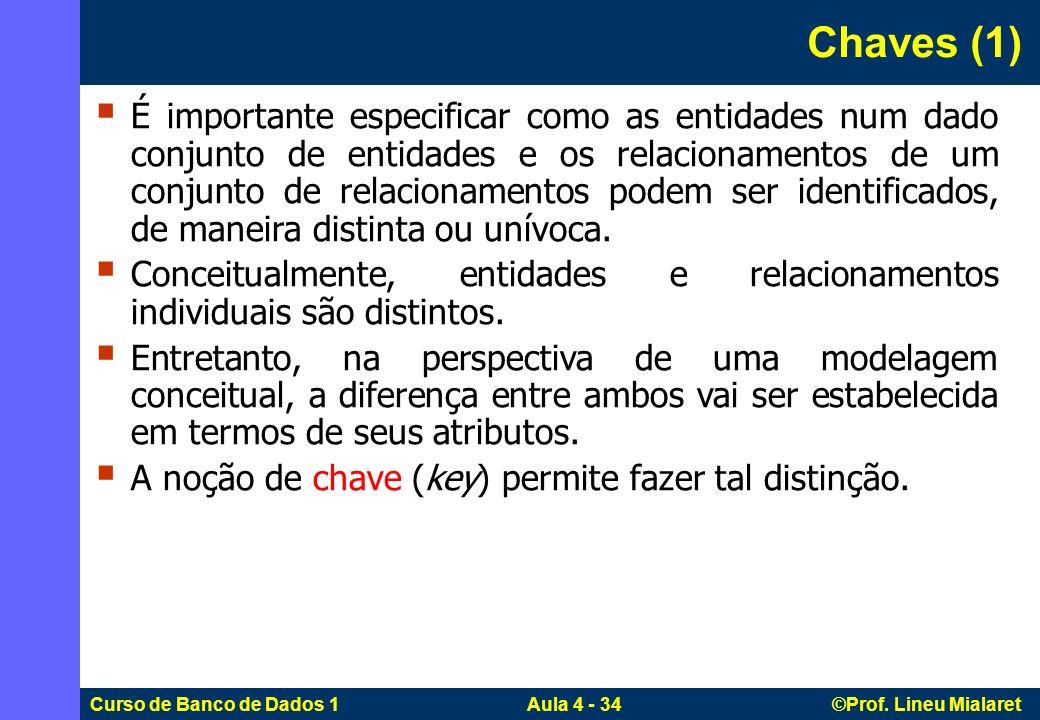 Curso de Banco de Dados 1 Aula 4 - 34 ©Prof. Lineu Mialaret Chaves (1) É importante especificar como as entidades num dado conjunto de entidades e os
