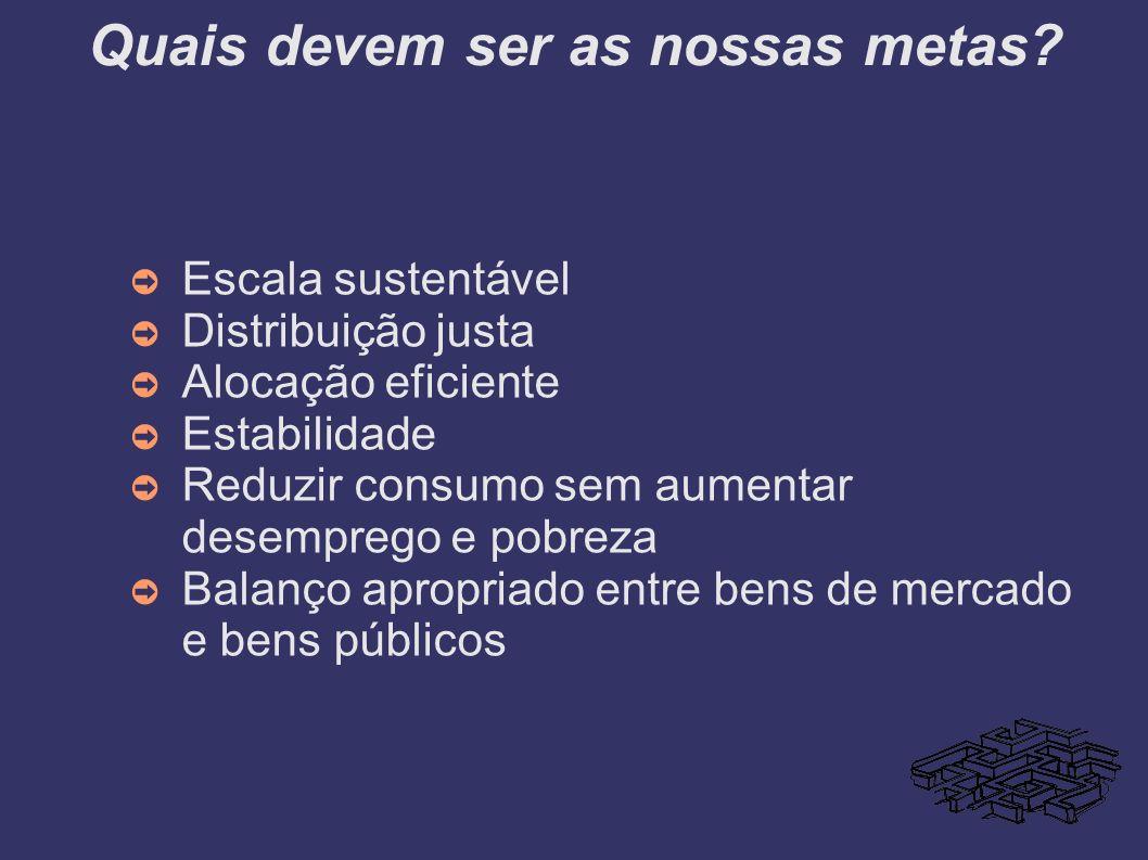 Quais devem ser as nossas metas? Escala sustentável Distribuição justa Alocação eficiente Estabilidade Reduzir consumo sem aumentar desemprego e pobre