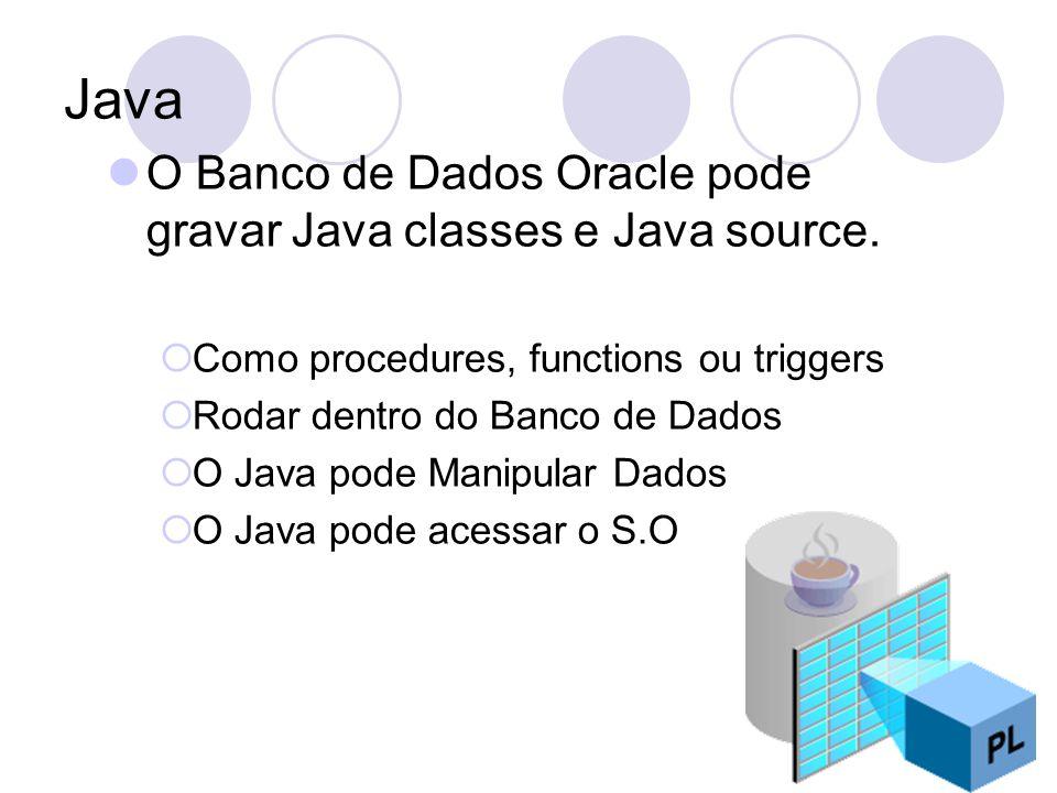 Java O Banco de Dados Oracle pode gravar Java classes e Java source. Como procedures, functions ou triggers Rodar dentro do Banco de Dados O Java pode