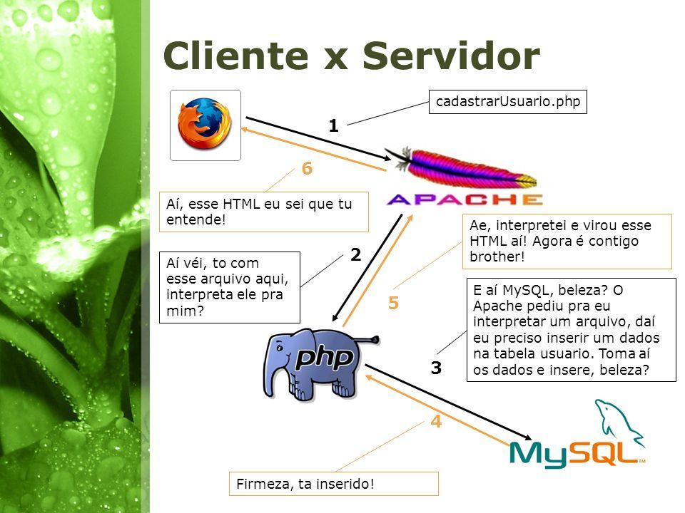 Cliente x Servidor 1 2 3 4 5 6 cadastrarUsuario.php Aí véi, to com esse arquivo aqui, interpreta ele pra mim? E aí MySQL, beleza? O Apache pediu pra e