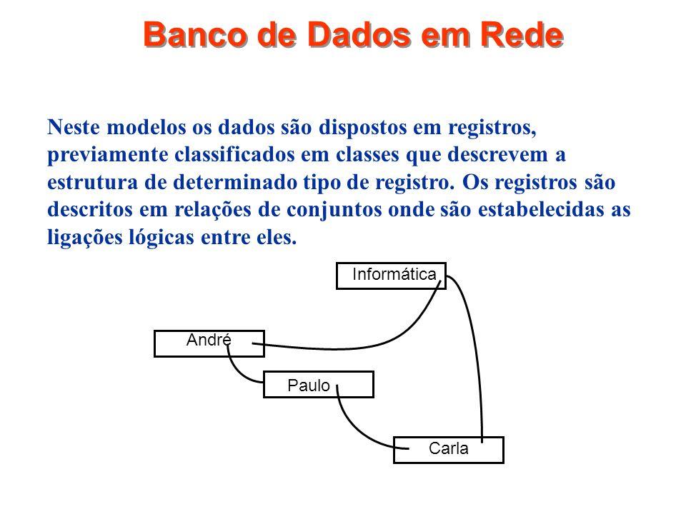 Banco de Dados em Rede Neste modelos os dados são dispostos em registros, previamente classificados em classes que descrevem a estrutura de determinad