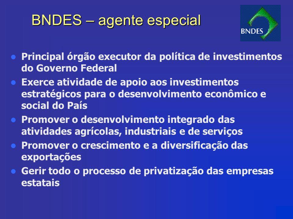BNDES – agente especial Principal órgão executor da política de investimentos do Governo Federal Exerce atividade de apoio aos investimentos estratégi