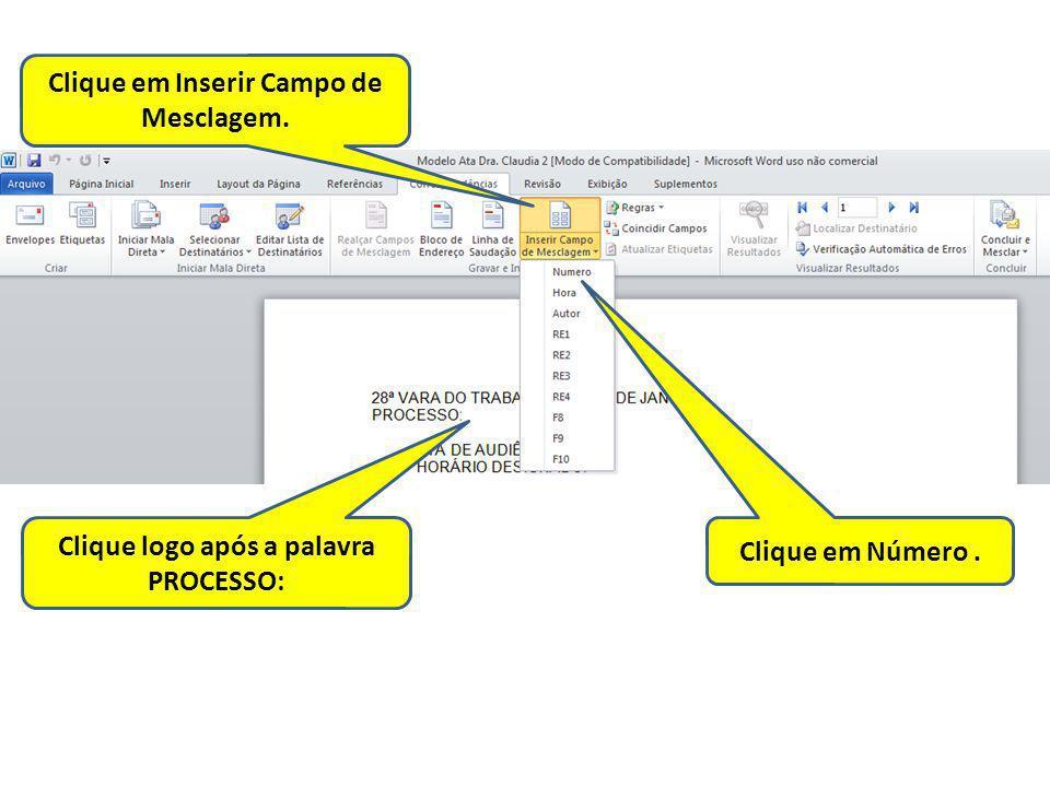 Clique em Inserir Campo de Mesclagem. Clique logo após a palavra PROCESSO: Clique em Número.