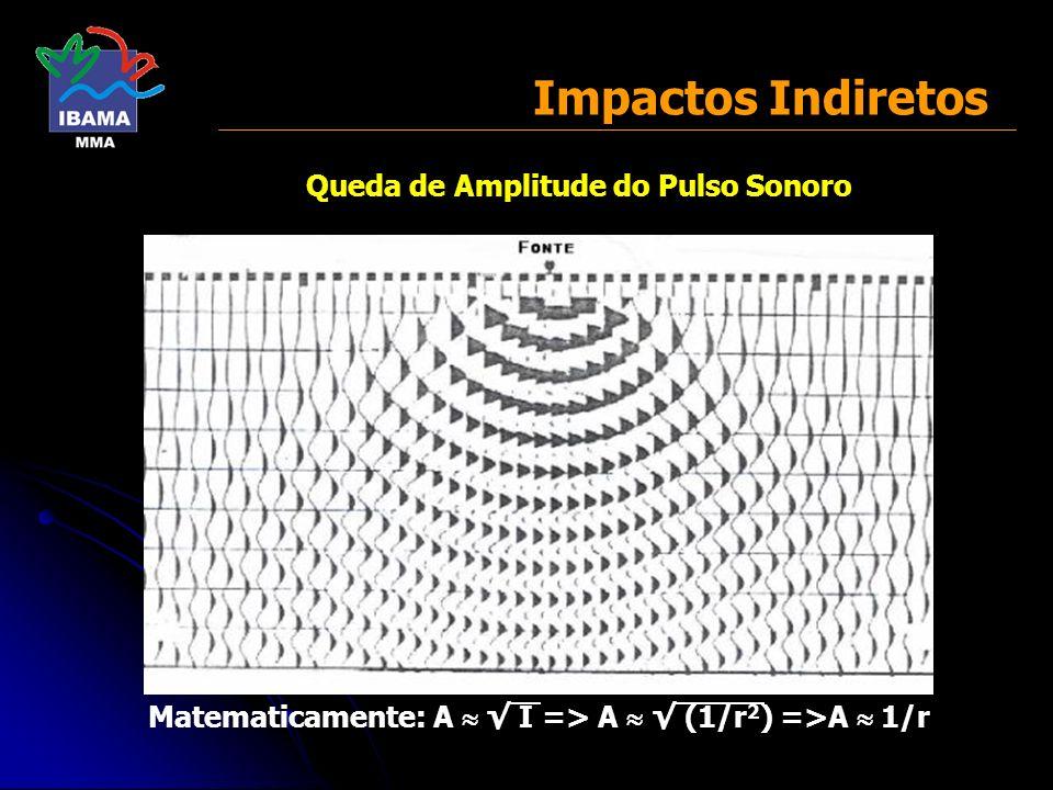 Queda de Amplitude do Pulso Sonoro Matematicamente: A I => A (1/r 2 ) =>A 1/r Impactos Indiretos