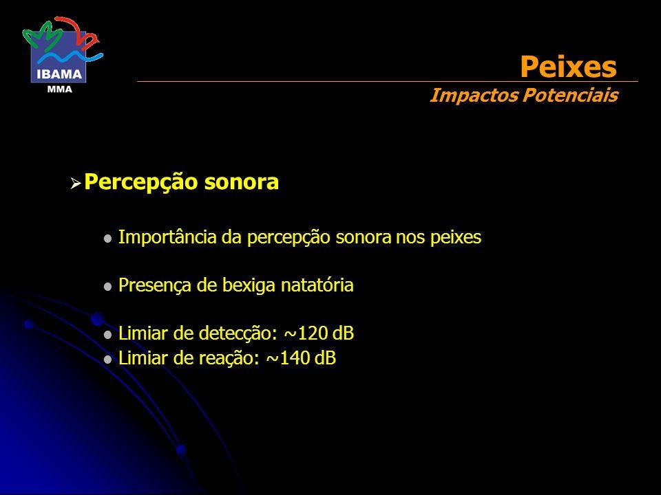 Percepção sonora Importância da percepção sonora nos peixes Presença de bexiga natatória Limiar de detecção: ~120 dB Limiar de reação: ~140 dB Peixes
