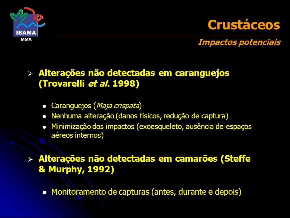 Crustáceos Impactos potenciais Alterações não detectadas em caranguejos (Trovarelli et al. 1998) Caranguejos (Maja crispata) Nenhuma alteração (danos