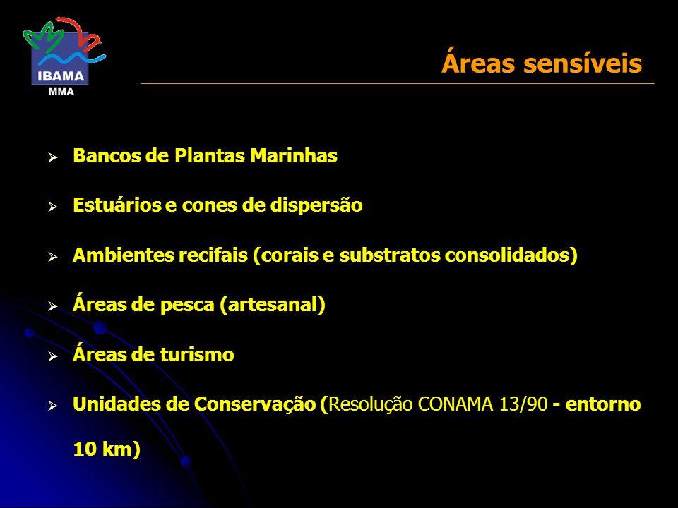 Áreas sensíveis Bancos de Plantas Marinhas Estuários e cones de dispersão Ambientes recifais (corais e substratos consolidados) Áreas de pesca (artesa