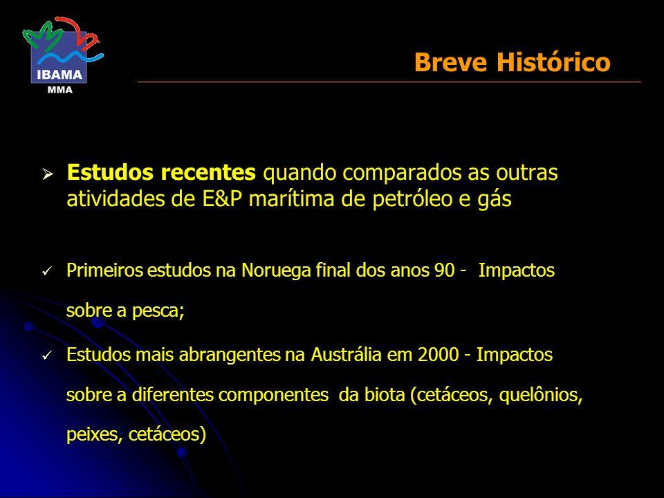 III - Proposta conceitual a ser considerada na Resolução CONAMA MINISTÉRIO DO MEIO AMBIENTE INSTITUTO BRASILEIRO DO MEIO AMBIENTE E DOS RECURSOS NATURAIS RENOVÁVEIS DIRETORIA DE LICENCIAMENTO E QUALIDADE AMBIENTAL ESCRITÓRIO DE LICENCIAMENTO DAS ATIVIDADES DE PETRÓLEO E NUCLEAR