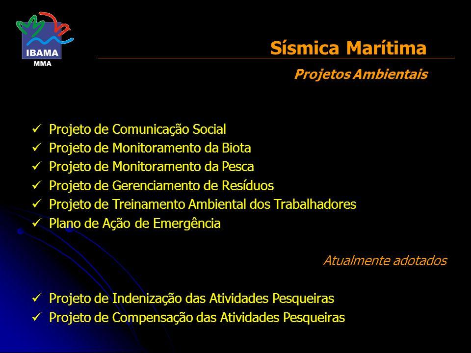 Projeto de Comunicação Social Projeto de Monitoramento da Biota Projeto de Monitoramento da Pesca Projeto de Gerenciamento de Resíduos Projeto de Trei