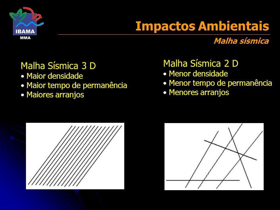 Malha Sísmica 3 D Maior densidade Maior tempo de permanência Maiores arranjos Malha Sísmica 2 D Menor densidade Menor tempo de permanência Menores arr