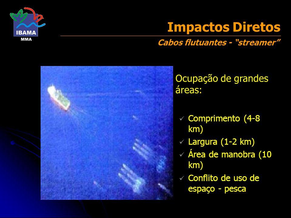 Águas rasas (<50m) Impactos Diretos Ocupação de áreas menores: Isolamento de áreas (10 km 2 ) Conflito de uso de espaço - pesca Interferência com recifes e bancos de algas Cabos de Fundo - OBC