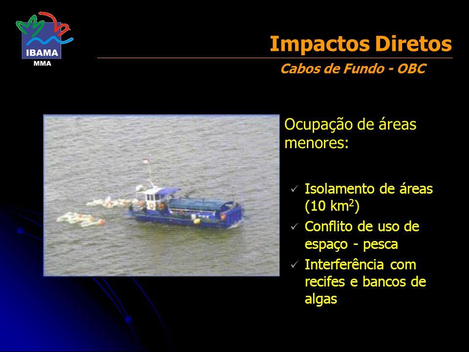 Danos a petrechos de pesca Restrição de acesso aos pesqueiros Pesca e sísmica são atividades mutuamente exclusivas para um mesmo espaço marinho (área de exclusão temporária) Sísmica X Pesca Impactos Diretos
