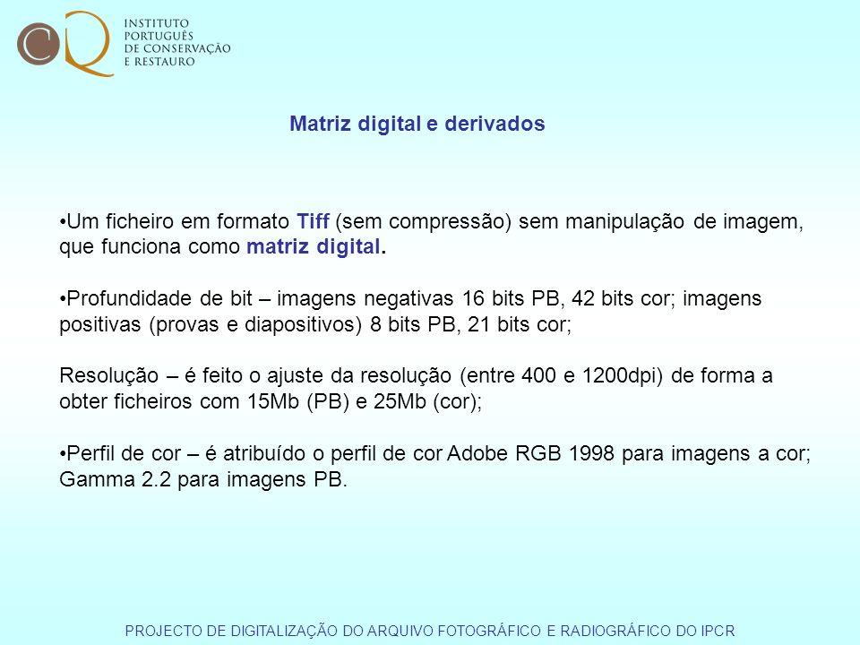Um ficheiro em formato Tiff (sem compressão) sem manipulação de imagem, que funciona como matriz digital. Profundidade de bit – imagens negativas 16 b