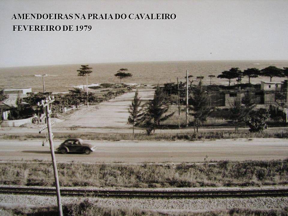 AMENDOEIRAS NA PRAIA DO CAVALEIRO AMENDOEIRAS NA PRAIA DO CAVALEIRO FEVEREIRO DE 1979
