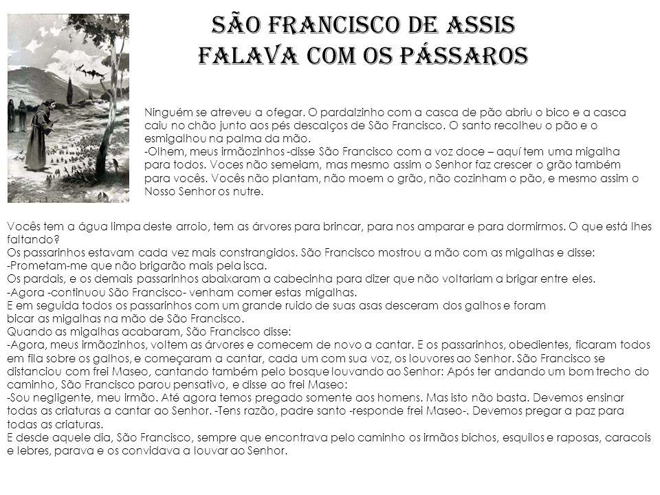 SÃO FRANCISCO DE ASSIS FALAVA COM OS PÁSSAROS Ninguém se atreveu a ofegar. O pardalzinho com a casca de pão abriu o bico e a casca caiu no chão junto