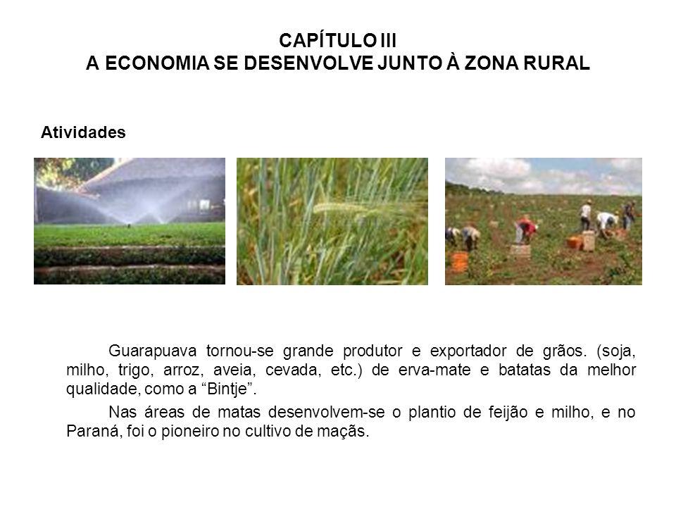 CAPÍTULO III A ECONOMIA SE DESENVOLVE JUNTO À ZONA RURAL Atividades Guarapuava tornou-se grande produtor e exportador de grãos.
