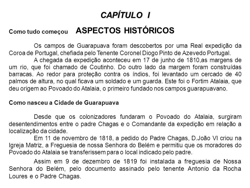 CAPÍTULO I CAPÍTULO I ASPECTOS HISTÓRICOS Como tudo começou Os campos de Guarapuava foram descobertos por uma Real expedição da Coroa de Portugal, chefiada pelo Tenente Coronel Diogo Pinto de Azevedo Portugal.
