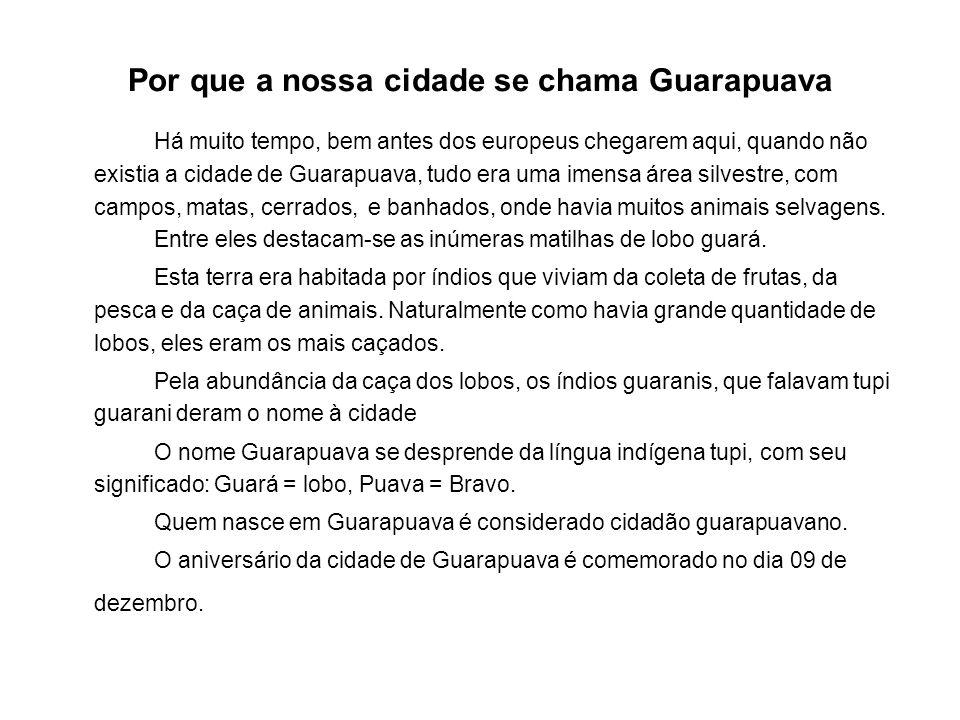 Por que a nossa cidade se chama Guarapuava Há muito tempo, bem antes dos europeus chegarem aqui, quando não existia a cidade de Guarapuava, tudo era uma imensa área silvestre, com campos, matas, cerrados, e banhados, onde havia muitos animais selvagens.