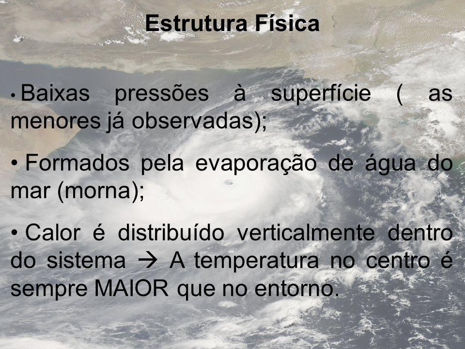 Estrutura Física Baixas pressões à superfície ( as menores já observadas); Formados pela evaporação de água do mar (morna); Calor é distribuído vertic