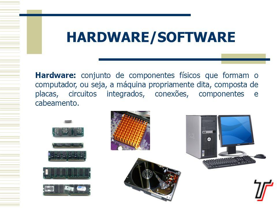 Software: programas de um computador, ou seja, o conjunto ordenado de instruções, expresso em linguagens especiais e compreensíveis para a máquina, para que ela possa executar as operações que desejamos.