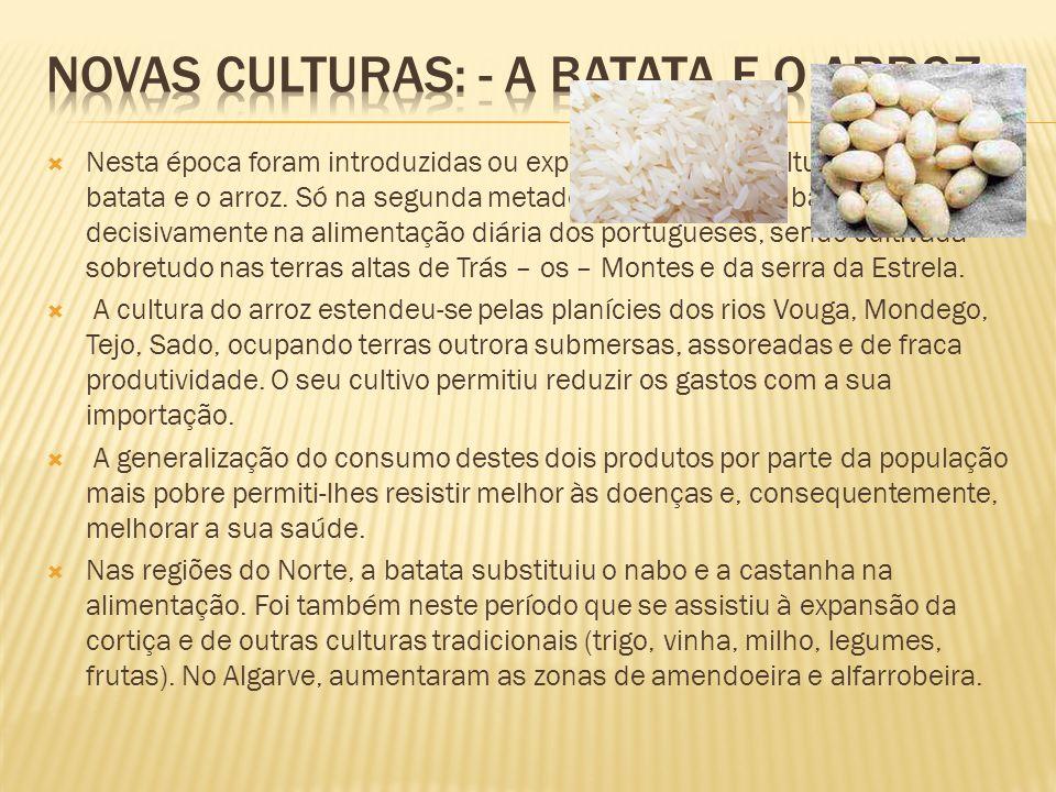 Nesta época foram introduzidas ou expandidas novas culturas como a batata e o arroz. Só na segunda metade do século XIX, a batata entrou decisivamente