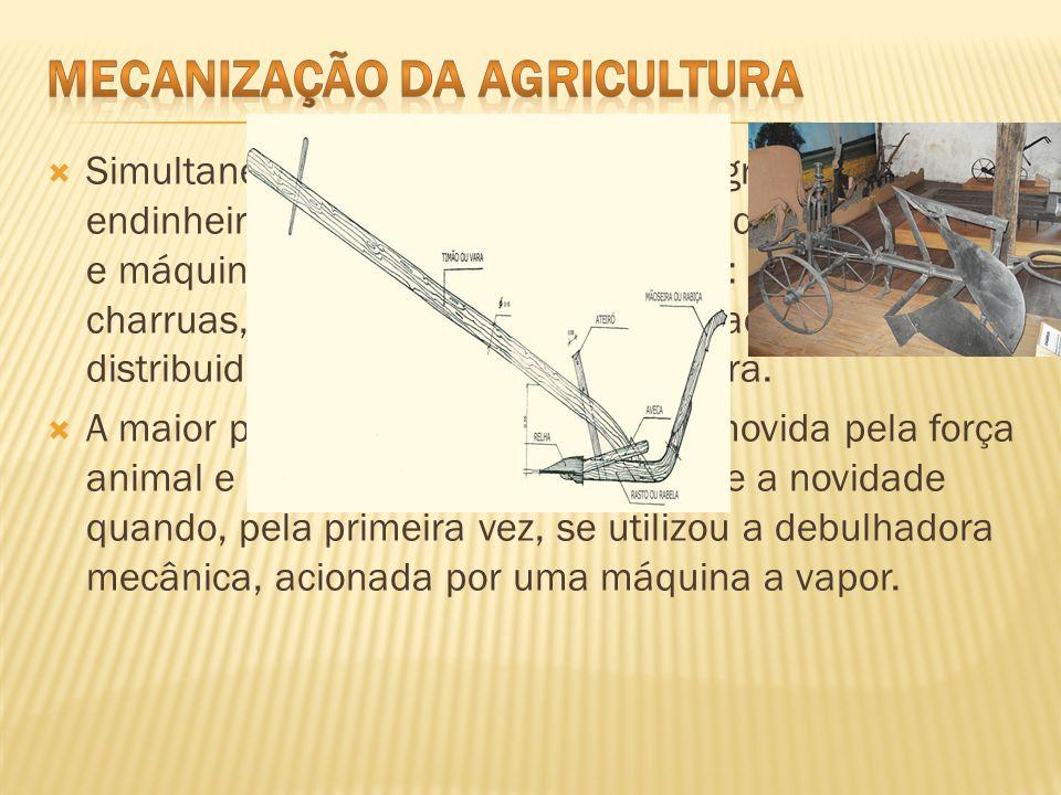 Simultaneamente, os proprietários agrícolas mais endinheirados investiram na compra de novas alfaias e máquinas agrícolas, feitas em ferro: arados, ch
