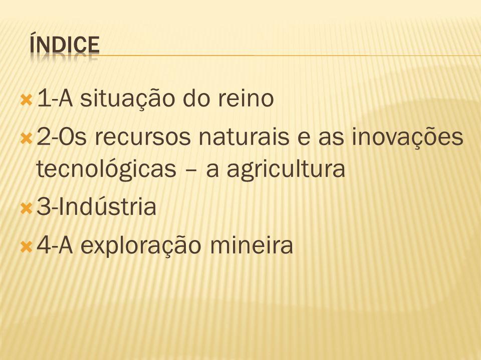 1-A situação do reino 2-Os recursos naturais e as inovações tecnológicas – a agricultura 3-Indústria 4-A exploração mineira