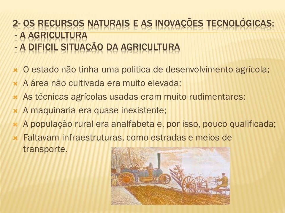 O estado não tinha uma politica de desenvolvimento agrícola; A área não cultivada era muito elevada; As técnicas agrícolas usadas eram muito rudimenta