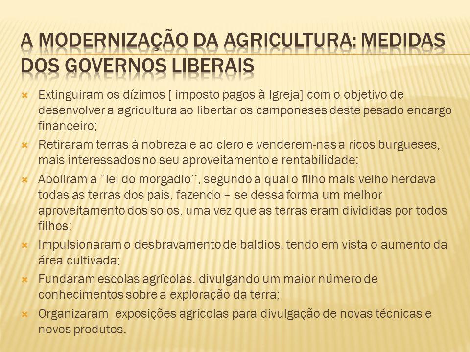 Extinguiram os dízimos [ imposto pagos à Igreja] com o objetivo de desenvolver a agricultura ao libertar os camponeses deste pesado encargo financeiro