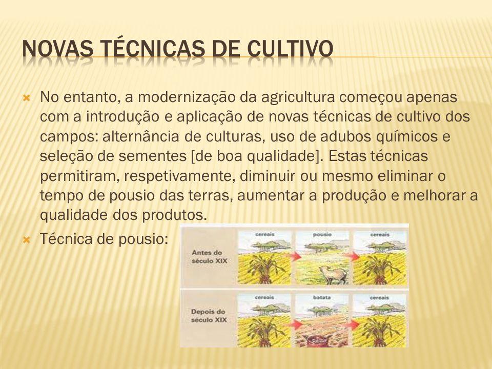No entanto, a modernização da agricultura começou apenas com a introdução e aplicação de novas técnicas de cultivo dos campos: alternância de culturas