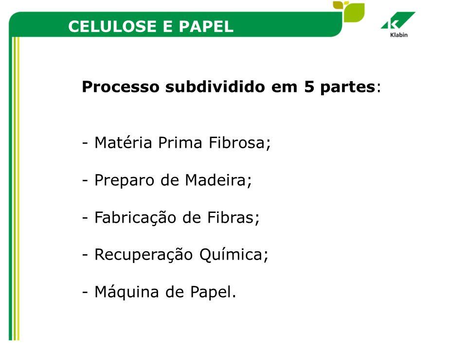CELULOSE E PAPEL Processo subdividido em 5 partes: - Matéria Prima Fibrosa; - Preparo de Madeira; - Fabricação de Fibras; - Recuperação Química; - Máq