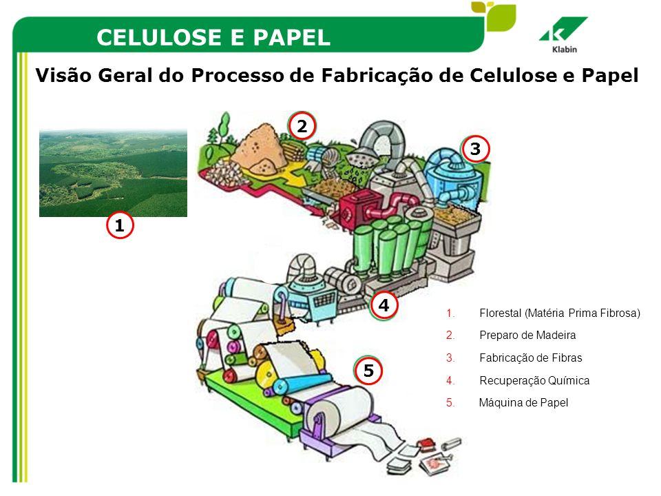 CELULOSE E PAPEL Visão Geral do Processo de Fabricação de Celulose e Papel 1.Florestal (Matéria Prima Fibrosa) 2.Preparo de Madeira 3.Fabricação de Fi