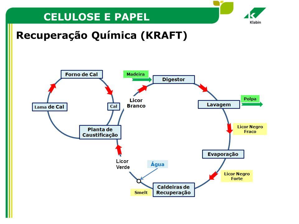 CELULOSE E PAPEL Recuperação Química (KRAFT) Licor Verde