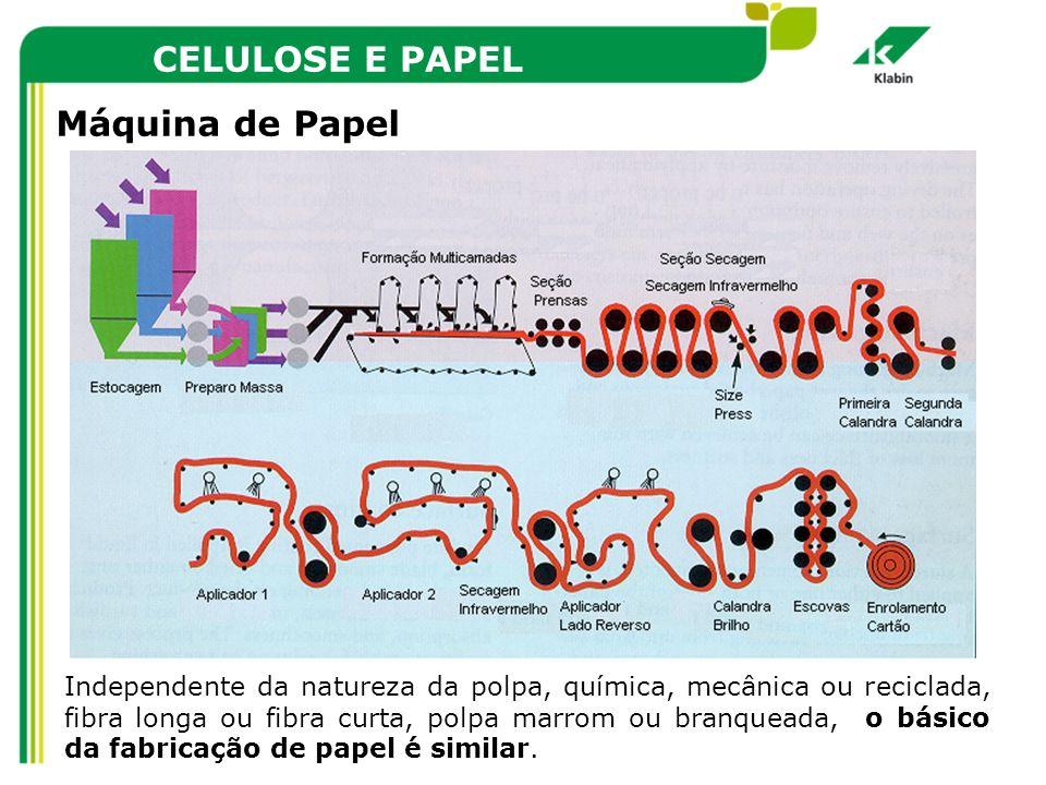 CELULOSE E PAPEL Máquina de Papel Independente da natureza da polpa, química, mecânica ou reciclada, fibra longa ou fibra curta, polpa marrom ou branq