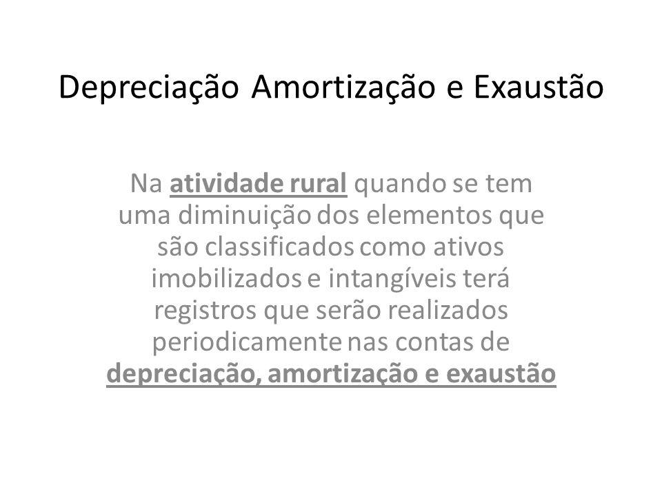 Depreciação Amortização e Exaustão Na atividade rural quando se tem uma diminuição dos elementos que são classificados como ativos imobilizados e inta