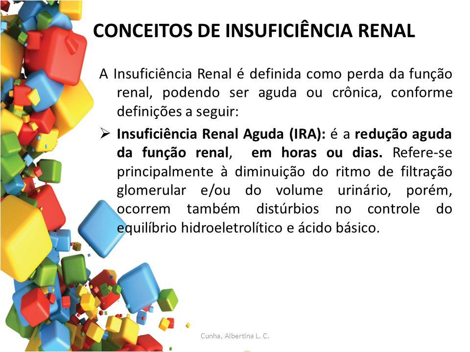 CONCEITOS DE INSUFICIÊNCIA RENAL A Insuficiência Renal é definida como perda da função renal, podendo ser aguda ou crônica, conforme definições a segu