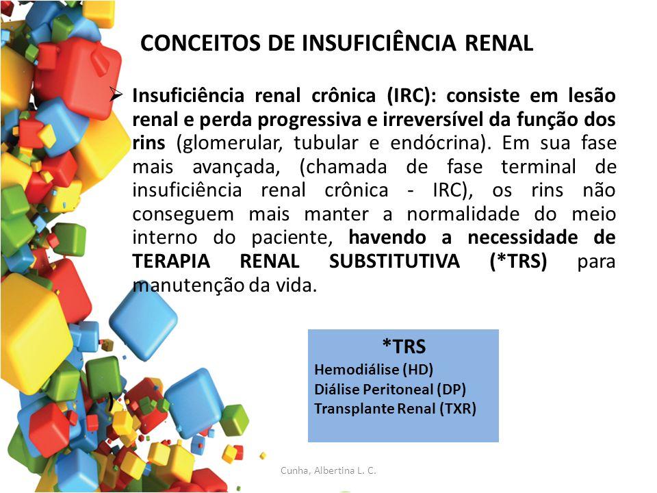 CONCEITOS DE INSUFICIÊNCIA RENAL Insuficiência renal crônica (IRC): consiste em lesão renal e perda progressiva e irreversível da função dos rins (glo