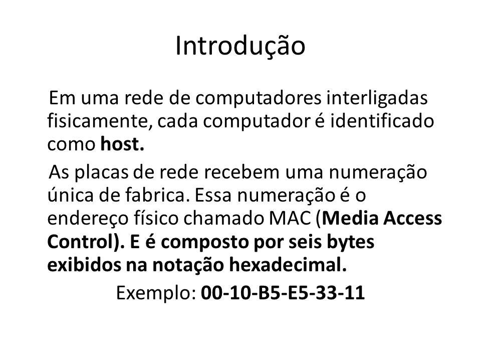Introdução Em uma rede de computadores interligadas fisicamente, cada computador é identificado como host. As placas de rede recebem uma numeração úni